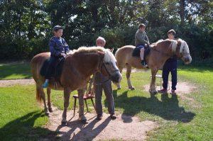 feizeit-2014-pferde-reiten